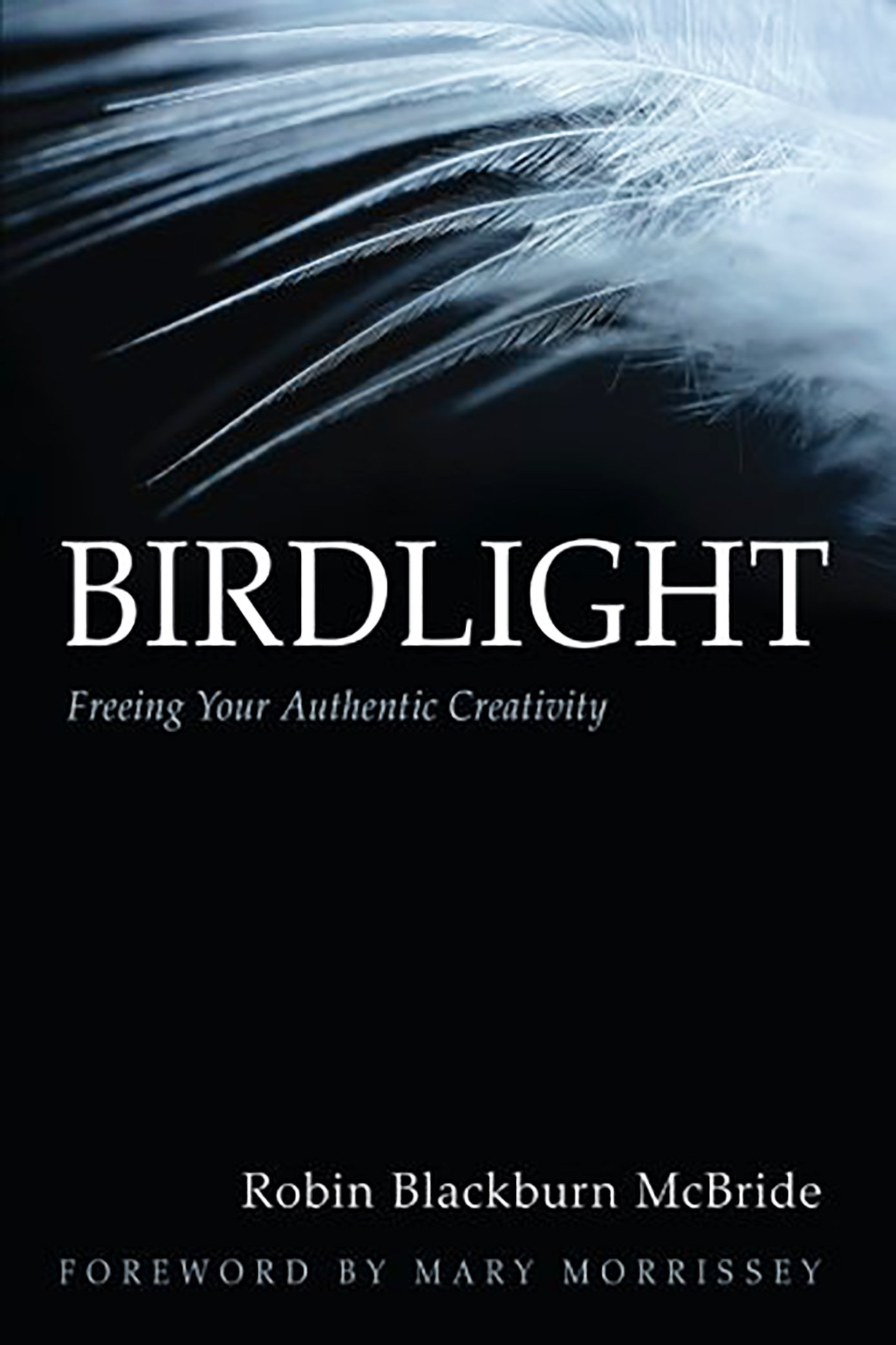 Robin Blackburn McBride - Birdlight